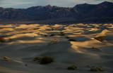 Dunes at Dawn