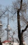 HARBIN CITY SCENES CHINA (6).JPG