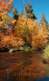 Autumn Sierras