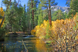Autumn Sierra creek