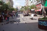 Shops along Avenida Central