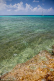 Grand Cayman beach.jpg