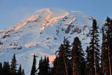 Mt. Rainier, February 2010