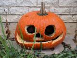 Halloween + 17 Days