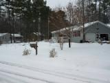 snowy front yard.JPG