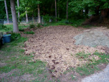 no more wood chips.jpg