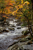 IMG_3670_1_2 2011 Gatlinburg.jpg