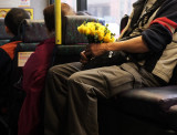 yellow flowers (on the bus)
