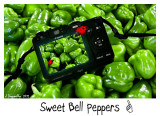 Picture Perfect Peppers