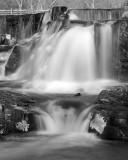 Southford Falls_8124.jpg