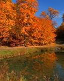 Hubbard Park_4296.jpg