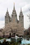 Salt-Lake-City-1-Utah.jpg