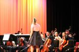 Orchestra-at-High-school.jpg