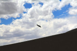 great_sand_dunes_national_park_and_preserve_colorado
