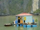 Life in Halong Bay