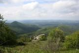 Forest near Lefkimi (Evros Region)