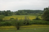Meadows near Kerkini