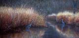 Rencontre dans le marais 18 x 36 - Collection privée