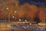 Aube flamboyante - Huile 24 x 36 - Collection privée