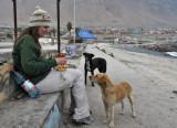 Antofagasta, Tocopilla, and San Pedro