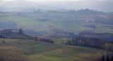 Soft, Hazy, Piedmonte region of Italy