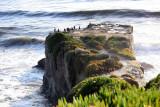 Pacific Ocean Path