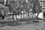 ParisLouveNDame-118blk.jpg