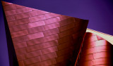 Frank Gehry Disney Hall