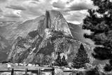 Half Dome X Yosemite National Park