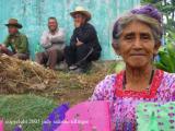 proud woman, san lucas toliman, guatemala