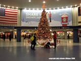 12.24.07 penn station tree