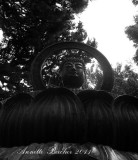 California2011-095wb.jpg
