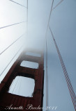 California2011-144wb.jpg