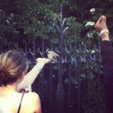 BIRD FEEDING.jpg
