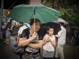 Rain  #6230029