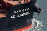 CK Bluebell