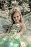 Fairy lightroom2.jpg
