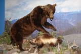 DSC02639  Buffalo Bill Museum Cody Wy R1.jpg