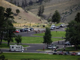 DSC01992  Elk Yellowstone Wy HX100.jpg