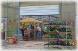 Brinkman's Country Corner greenhouse