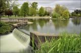 Water fall at Alton Baker Park
