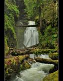 Trestle Creek Falls trail NO. 1403C