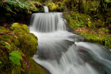 White Head Creek