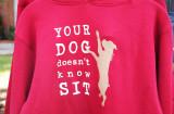 great sweatshirt