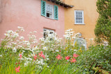 Portmeirion, a Photographer's Paradise
