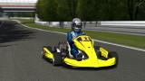 GT PDI Racing Kart 100 - Nürburgring Nordschleife