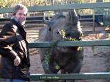 Ric Feeding the Rhino