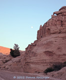Petra is a mix of Nabatean, Roman Architecture