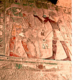 Horus and Amun