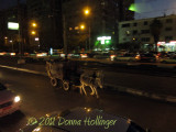 Donkey and dog along with the wagon